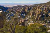 Click to see What's New : Chiricahua National Monument